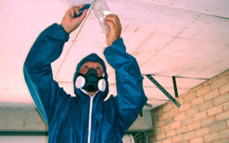 Asbestos Surveys - SWT